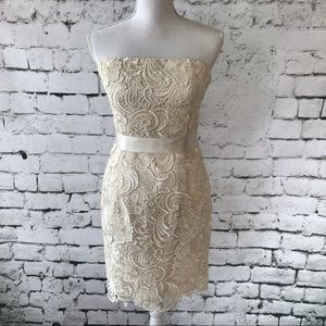 Adrianna Papell Lace and Beaded Evening Dress SZ 8